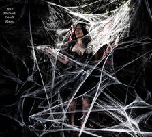MLP Natalie U Faerie trapped in Web Oct21 7004 by MichaelLeachPhoto
