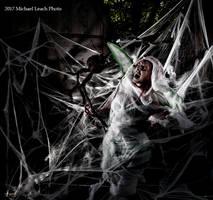 MLP Kalaisha Faerie Cocooned in Web Oct17 8327 by MichaelLeachPhoto