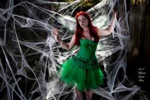 MLP Kalaisha Faerie First Caught in Web Oct17 7954 by MichaelLeachPhoto