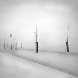 Winter Lantern by giedriusvarnas
