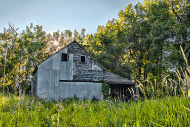 Julys Meadow II by Dimentichisi