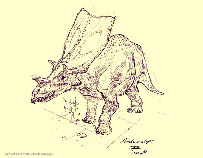 Anchiceratops Sketch by Red-Dilopho