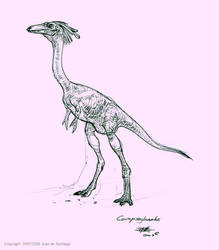 Compsoghnatus Sketch