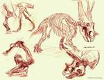 Museum Sketches 3