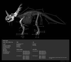 Skeleton Diagram 1 by Red-Dilopho