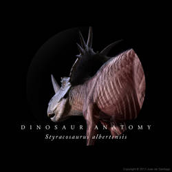 Styracosaurus Anatomy by Red-Dilopho