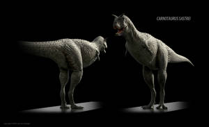 Carnotaurus sastrei (textured) by Red-Dilopho