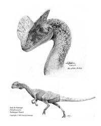 Dilophosaurus by Red-Dilopho