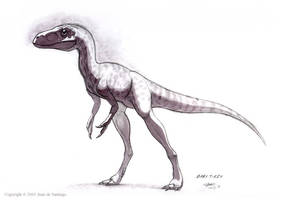 Baby T-Rex by Red-Dilopho