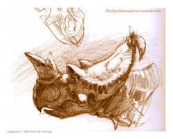Pachyrhinosaurus sketch by Red-Dilopho