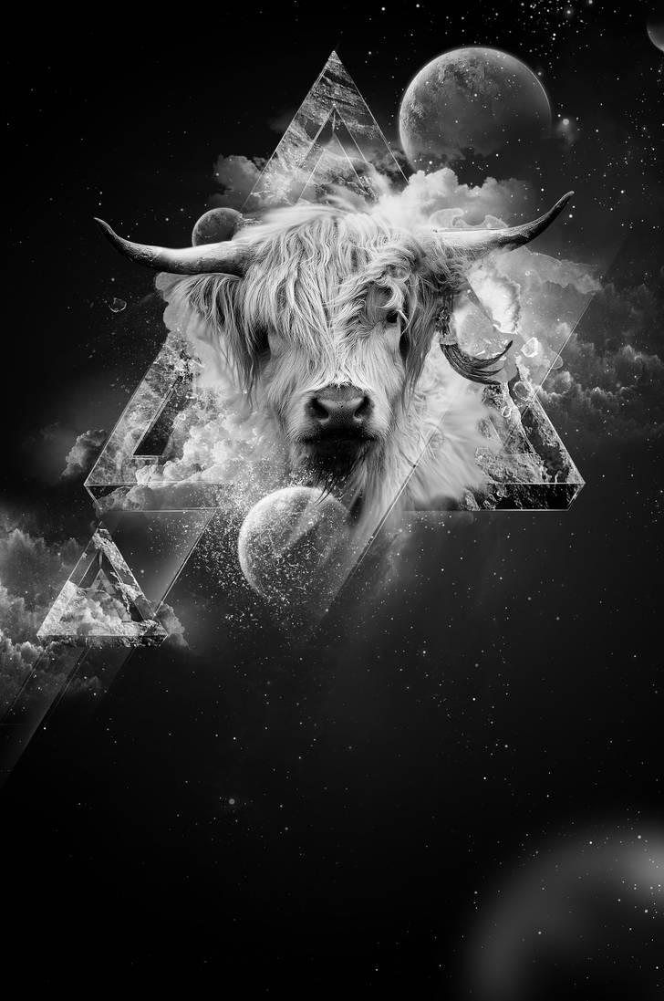Taurus by MrBeO9X
