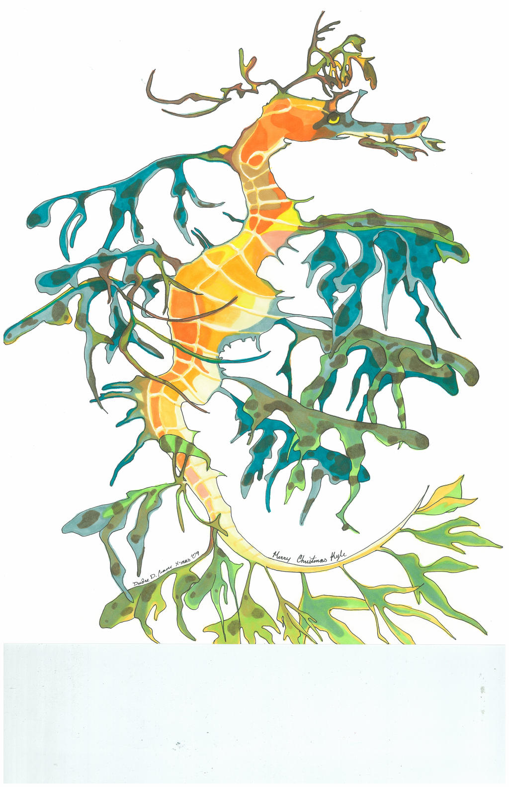 Leafy Seadragon by blufyrdragon4 on DeviantArt