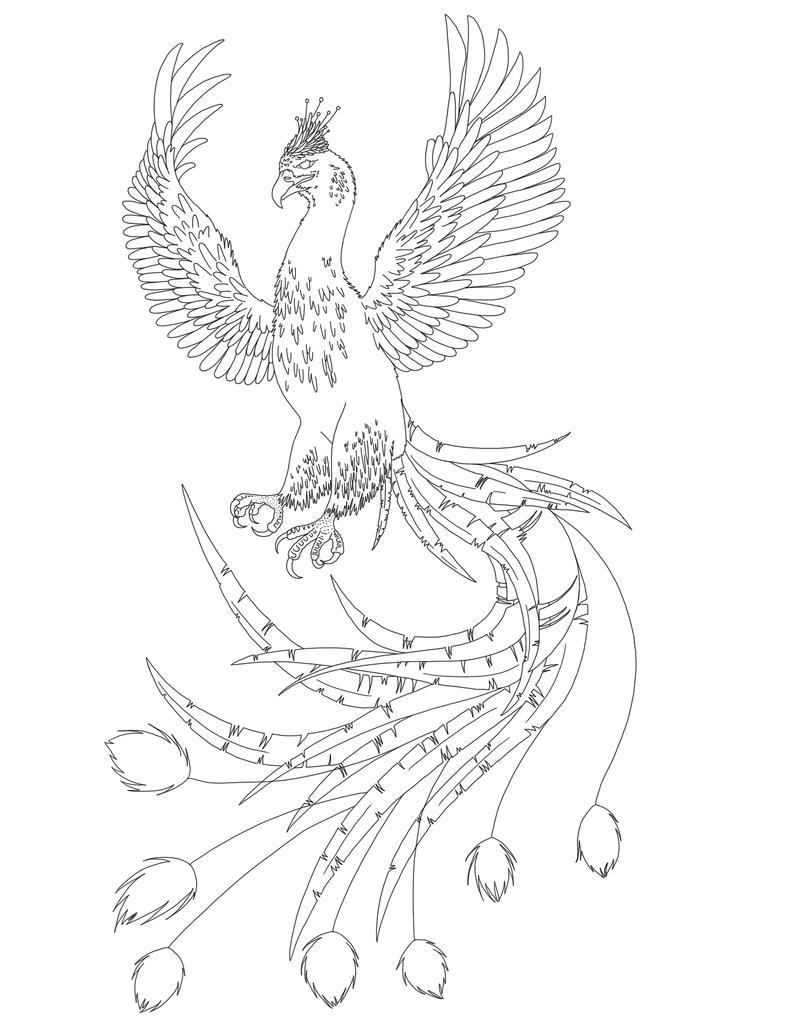Bald Eagle Printout EnchantedLearningcom