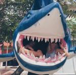 Two Women Eaten by One Shark