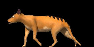 thylacine walk by NagualTheBuya