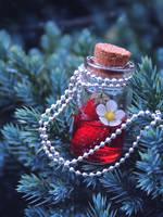 Nightberry Potion by GloomySisterhood