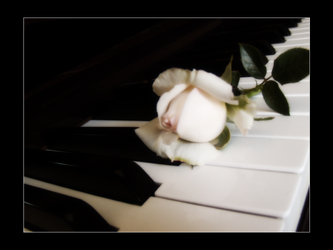 .: farewell to the pianist :.