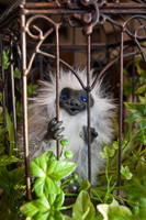 Outside Looking In by BelovedUnderwing