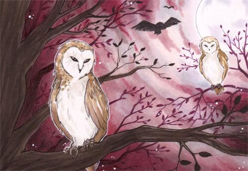 Tyto alba by Nanaowl