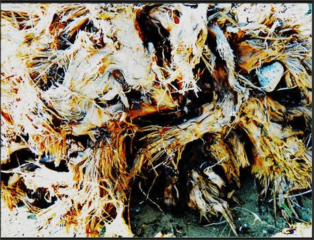Hazey Texture