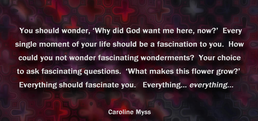 CM You should wonder by AmyinWonderlandofOz