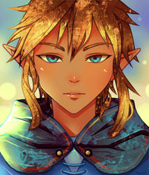 Link BOTW (very original title)