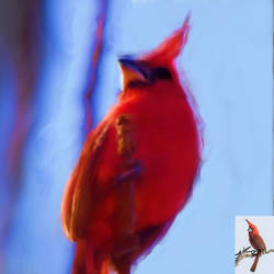 Digital art, tropical bird by oscurity