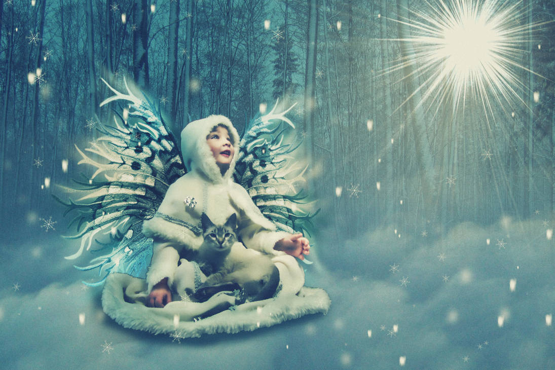 Snow-Fairy