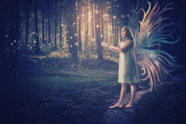 Forest Fairy Sunset