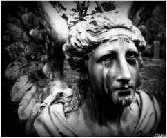 Weeping Angel by CompleoOrexis