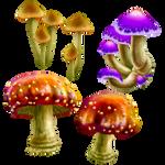 CLIP- Magical Fungi