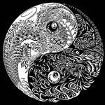 Yin Yang Lung Fu