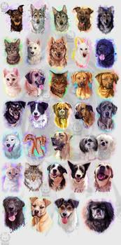 Speedpaint Pet Portraits 2015