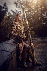 Elven Knight out of the Hobbit