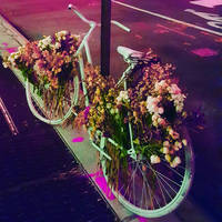 a bicycle to remember