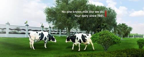 Dairy Company in UAE | Al Ain Farms