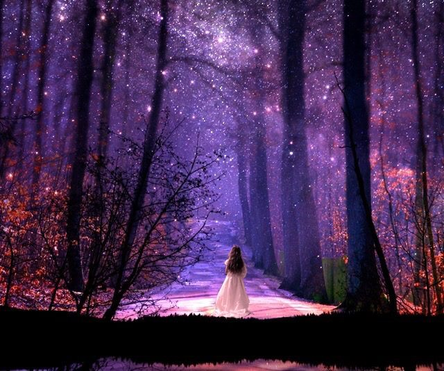starry forest wallpaper - photo #19