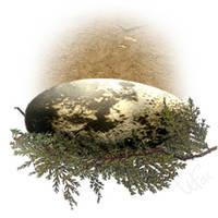 Deinonychus egg by Weatherfac