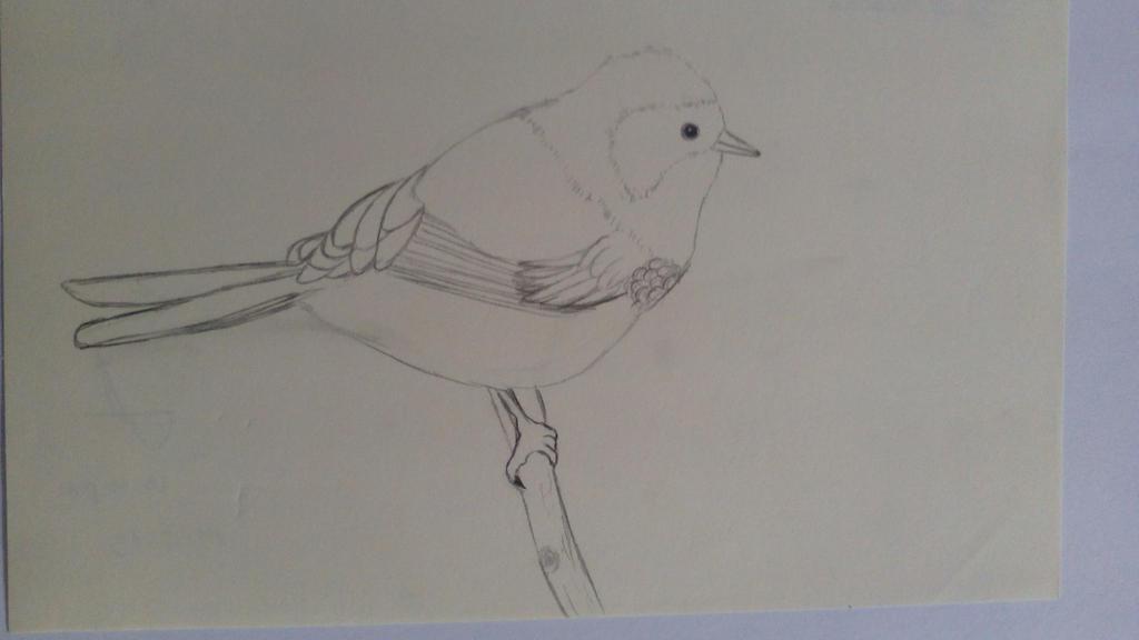 Bird_ Pajarito by GemaLisbeth