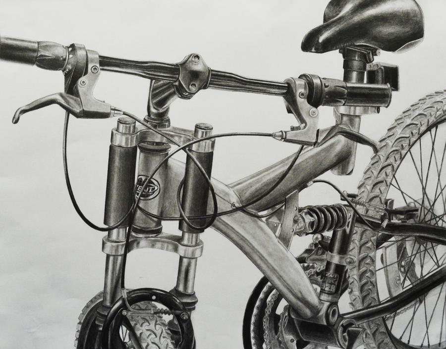 Risd Bike Drawings 13192 Infobit