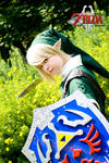 Link - The Legend of Zelda Twilight Princess