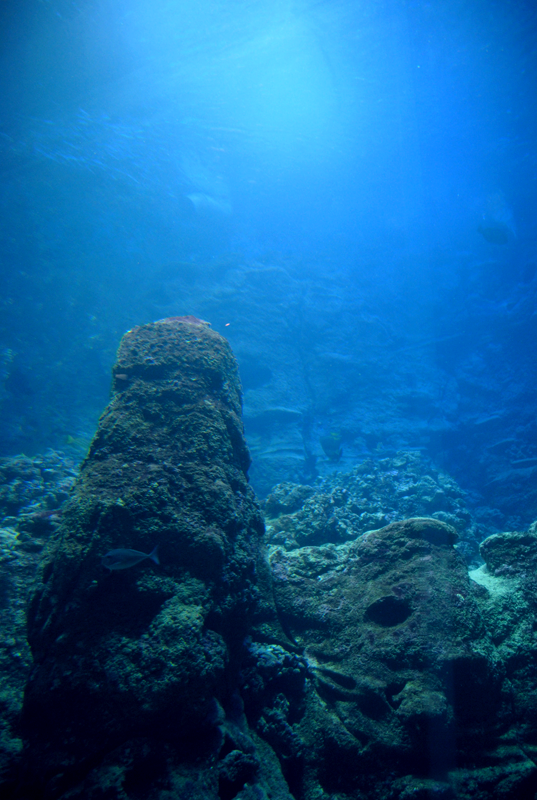 Deep water by 0guri