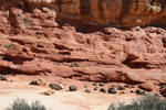 Red Rock Land