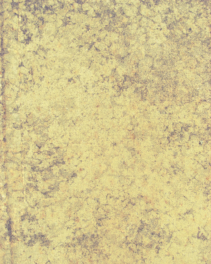 Parchment Paper Like Texture by GreenEyezz-stock