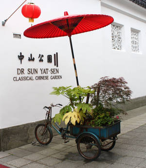 Florsit's Tricycle in China Town