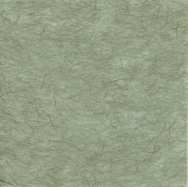 Texture--Grey-green texture by GreenEyezz-stock