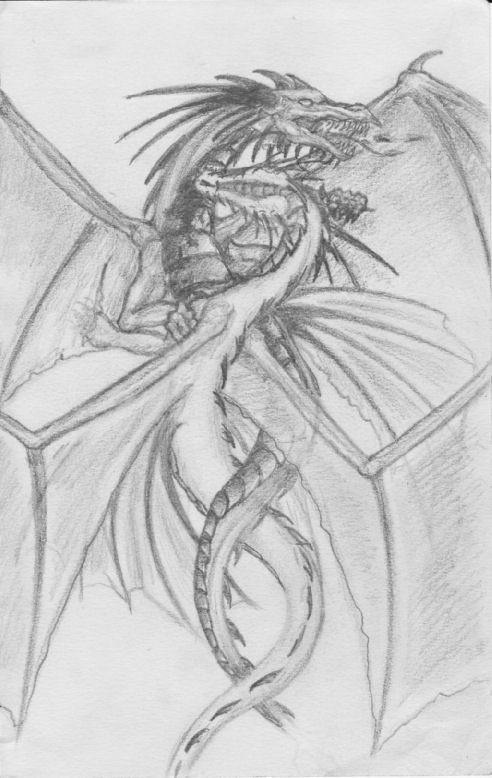Pencil Drawings Of Dragons Fighting Dragons fighting by dr...