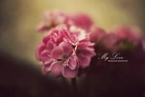 My love by pincel3d