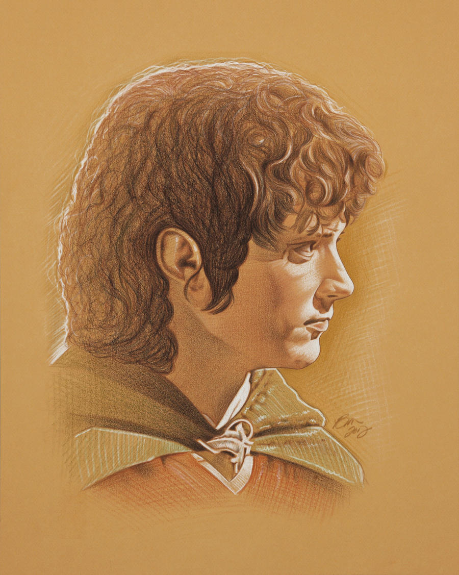 Mr. Frodo by BenCurtis