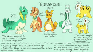 Tetrafins - Open Species